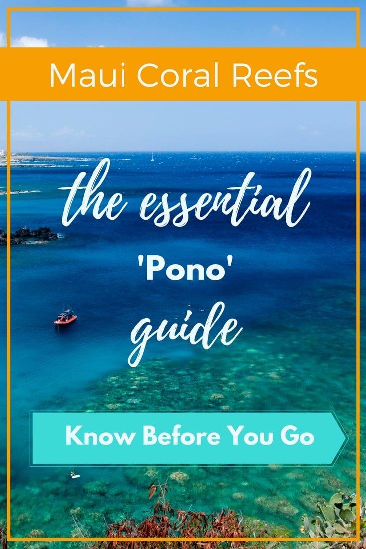Maui Coral Reefs essential pono guide