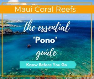 Maui Coral Reef Safe Suncreen
