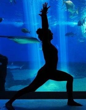 yoga-aquari-om