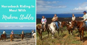 Horseback Riding In Maui