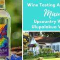 Wine Tasting MauiWine Winery Vineyards