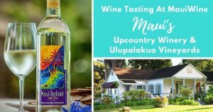 Wine Tasting MauiWine Winery Vineyards