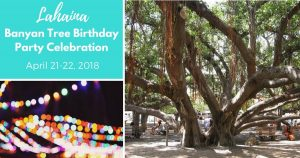 Lahaina Banyan Tree Birthday Party
