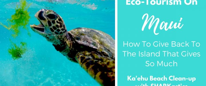 Eco-Tourism On Maui | How To Give Back To The Island That Gives So Much