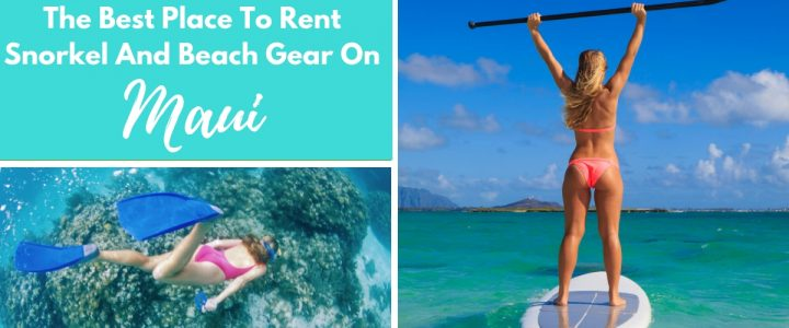 Auntie Snorkel. The Best Place To Rent Snorkel And Beach Gear On Maui